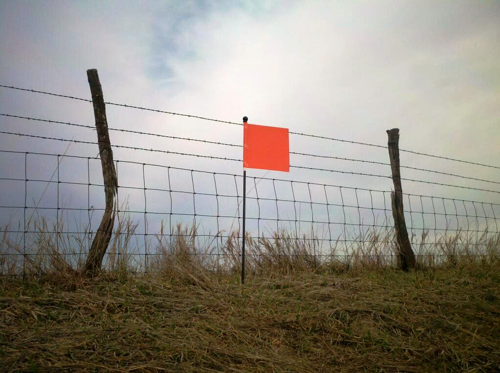 Pink Flag at Map Ref 41 N 93 W | J. ERIC SMITH